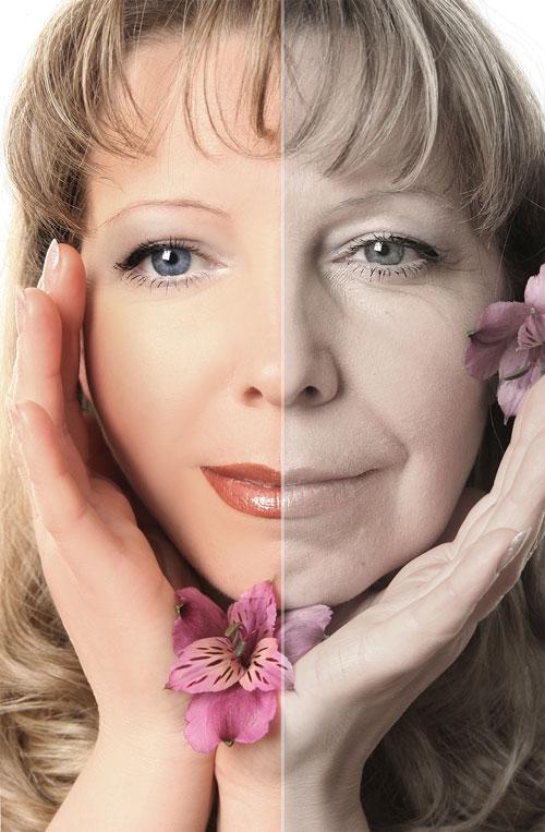 Collagen & Aging