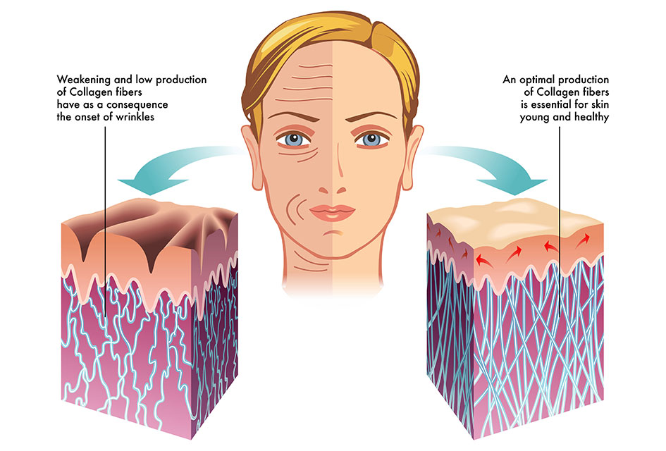 collagen For healthy Skin